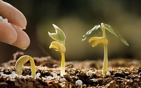 Abbildung: Ideen zur Marktreife bringen